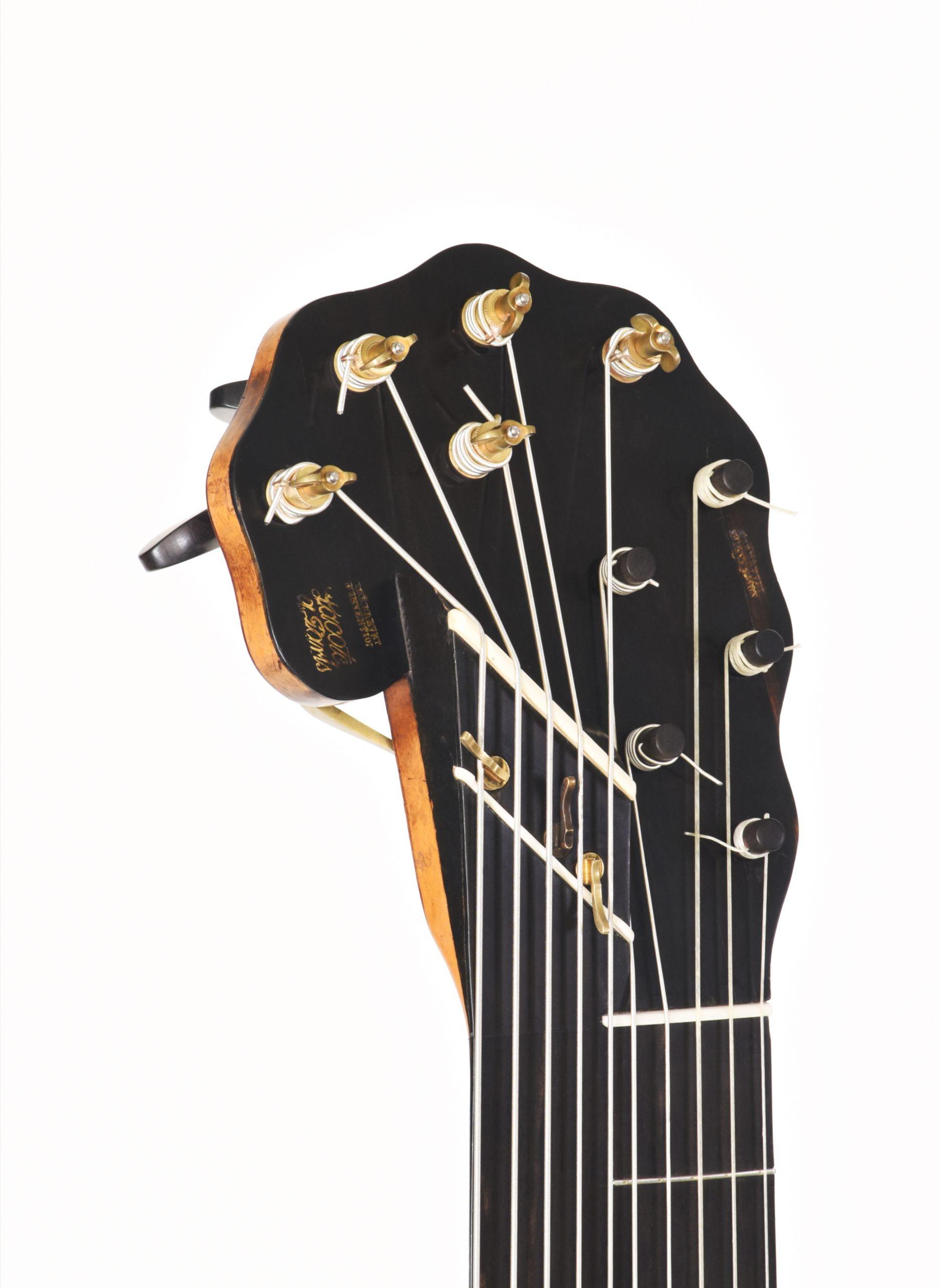 Detail of guitar decacorde